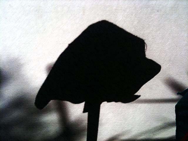 Schatten 7