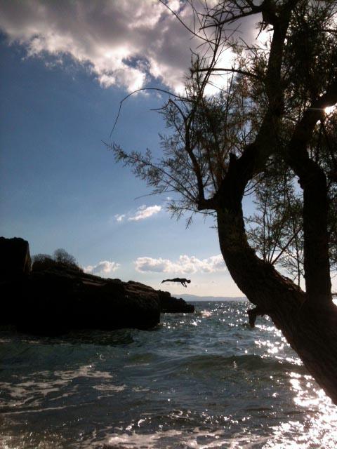 springer-strand