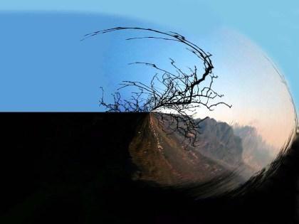 Baum abstrakt a