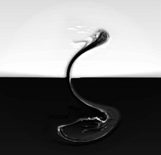 dieSchlange richtet sich auf