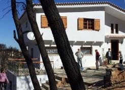 renoviertes Haus, Pinienstämme