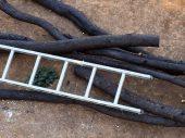 Leiter und Brennholz