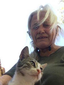 Eine Katze ließ sich retten