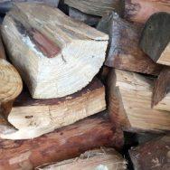 dicke entrindetes Pinienholz